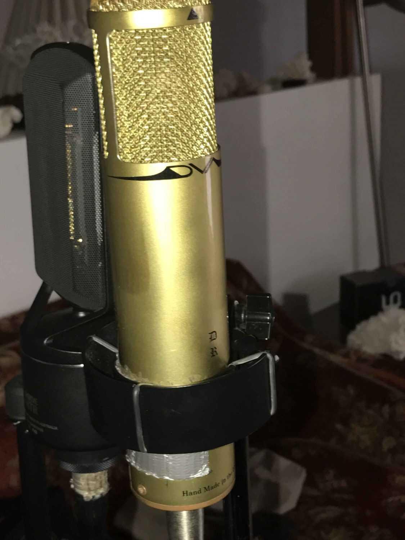 ms microphones