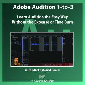 Adobe Audition 1-to-3