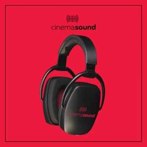 Direct Sound EX29 Plus Extreme Isolation Headphones – Cinema Sound Branded!