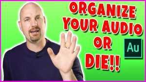 Organize your Audio or DIE in Adobe Premiere Pro!