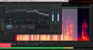 Fixing Bird Noise in Audio Recordings in Adobe Audition