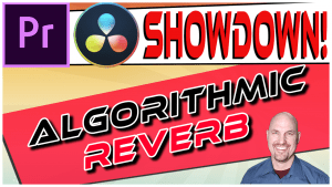 Premiere Vs. Resolve SHOWDOWN: Best Algorithmic Reverb